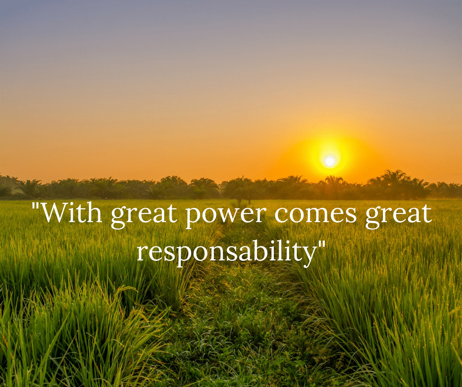 -With great power comes great responsability-