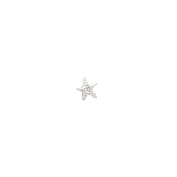 A Beautiful Story - AW25707_Starfish-Sterling-Silver-Earring